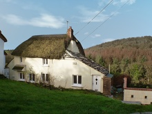 Detached & Thatched Cottage